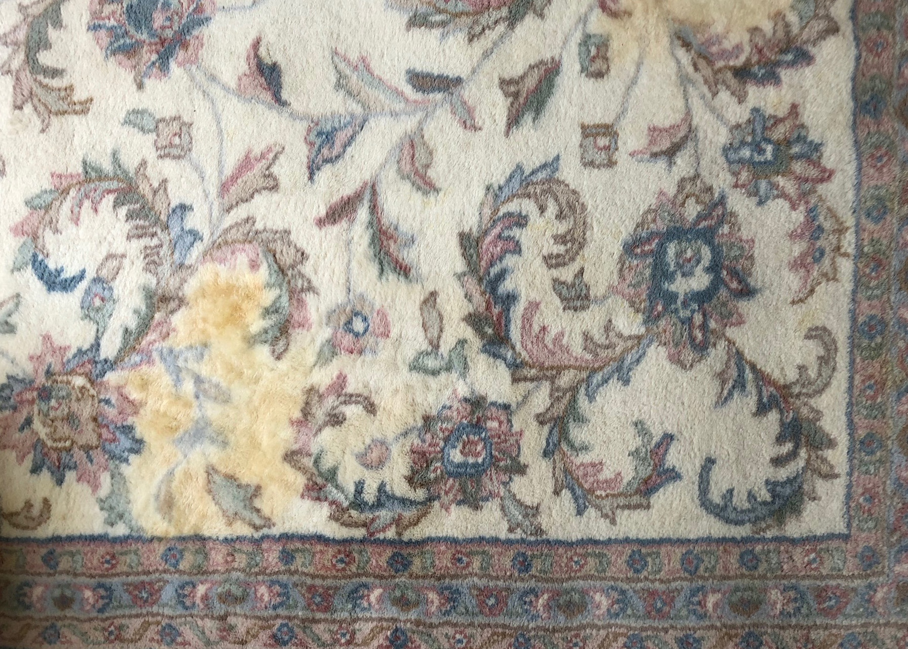 Before-Pet stain removal and color restoration on Persian rug.